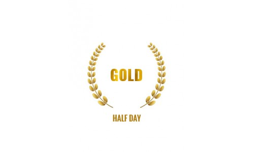Gold Rally Experience Half Day