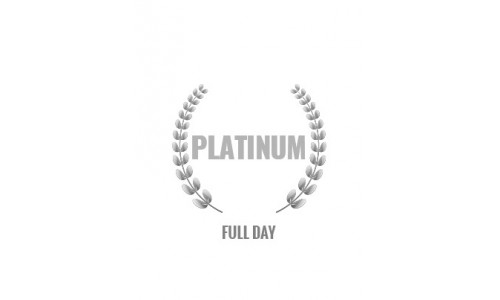 Platinum Rally Experience Full Day