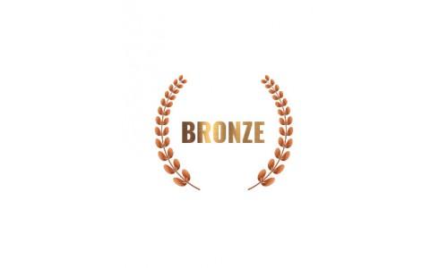 Bronze Rally Experience
