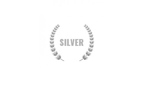 Silver Rally Experience